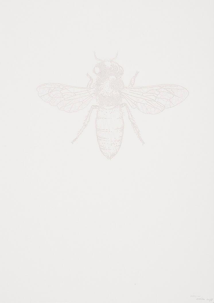 Miso | Bee pin pricks on paper | Est Magazine