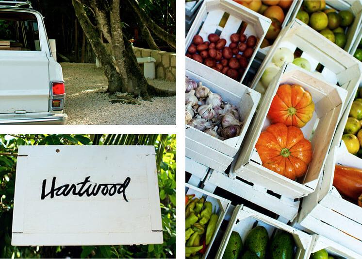Hartwood Tullum Restaurant Est Magazine