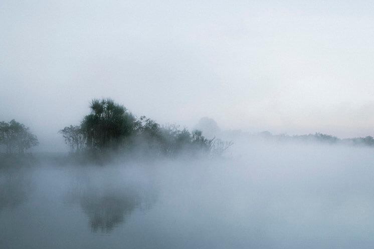 Mist Lake | © Felix Forest | Est Magazine