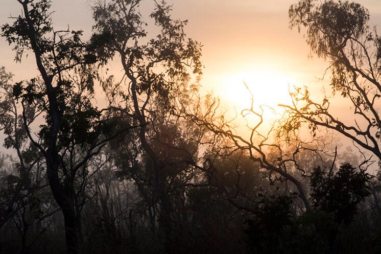 Sunset | © Felix Forest | Est Magazine