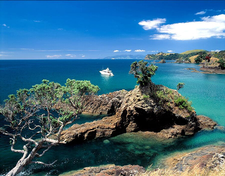 Auckland City Guide Est Magazine Cactus Bay