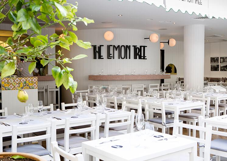 Est-Magazine-Lemon Tree-406