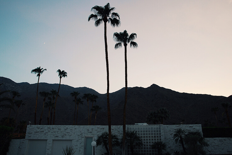 Est-Magazine-Palm-Springs-These-Foregin-Lands6