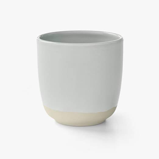 kali tea cup dove 2