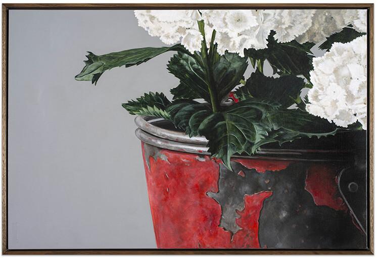 Est Living Fire Bucket Hydrangea Edwina Corlette