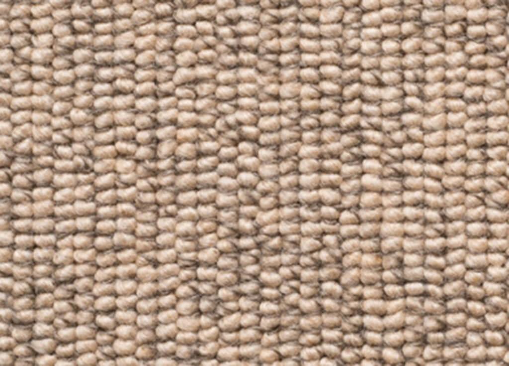 Lisburn-Cavalier-Bremworth-Carpet-Est-Living-DD-Cambric