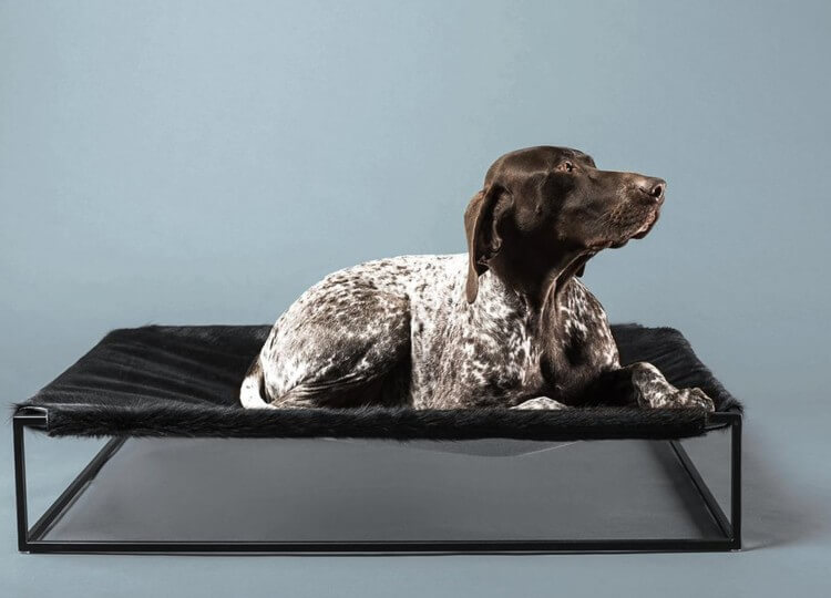 Angus Dog Bed | Arving Grex | Est Living