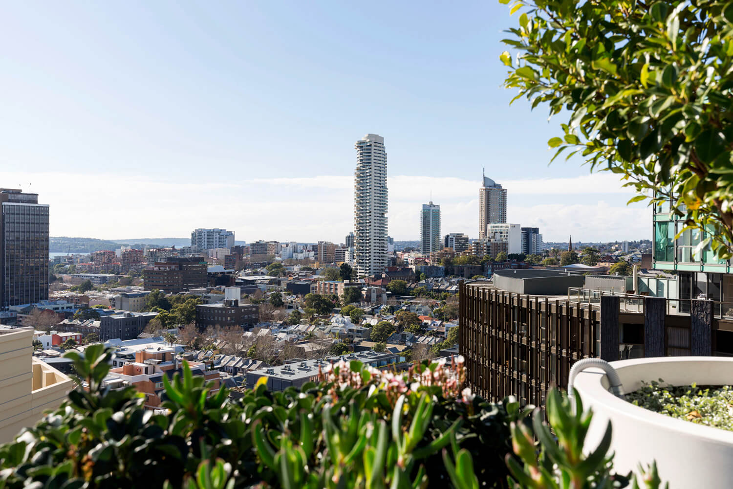 est-living-open-house-surry-hills-roof-top-apartment-bresic-whitney-13