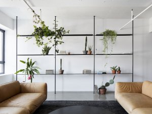 Get The Look: Indoor Greenery