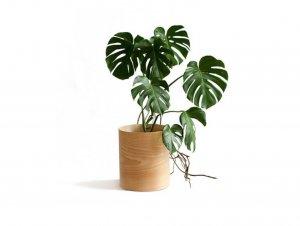 Flor Planter