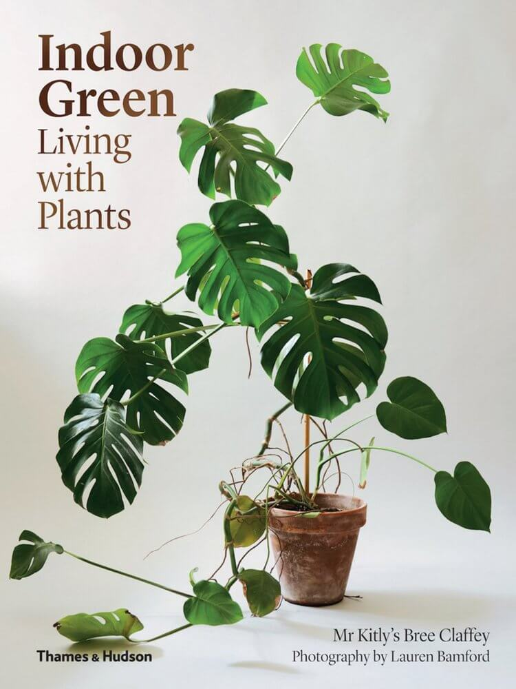 Indoor Green: Living With Plants | Bree Claffey