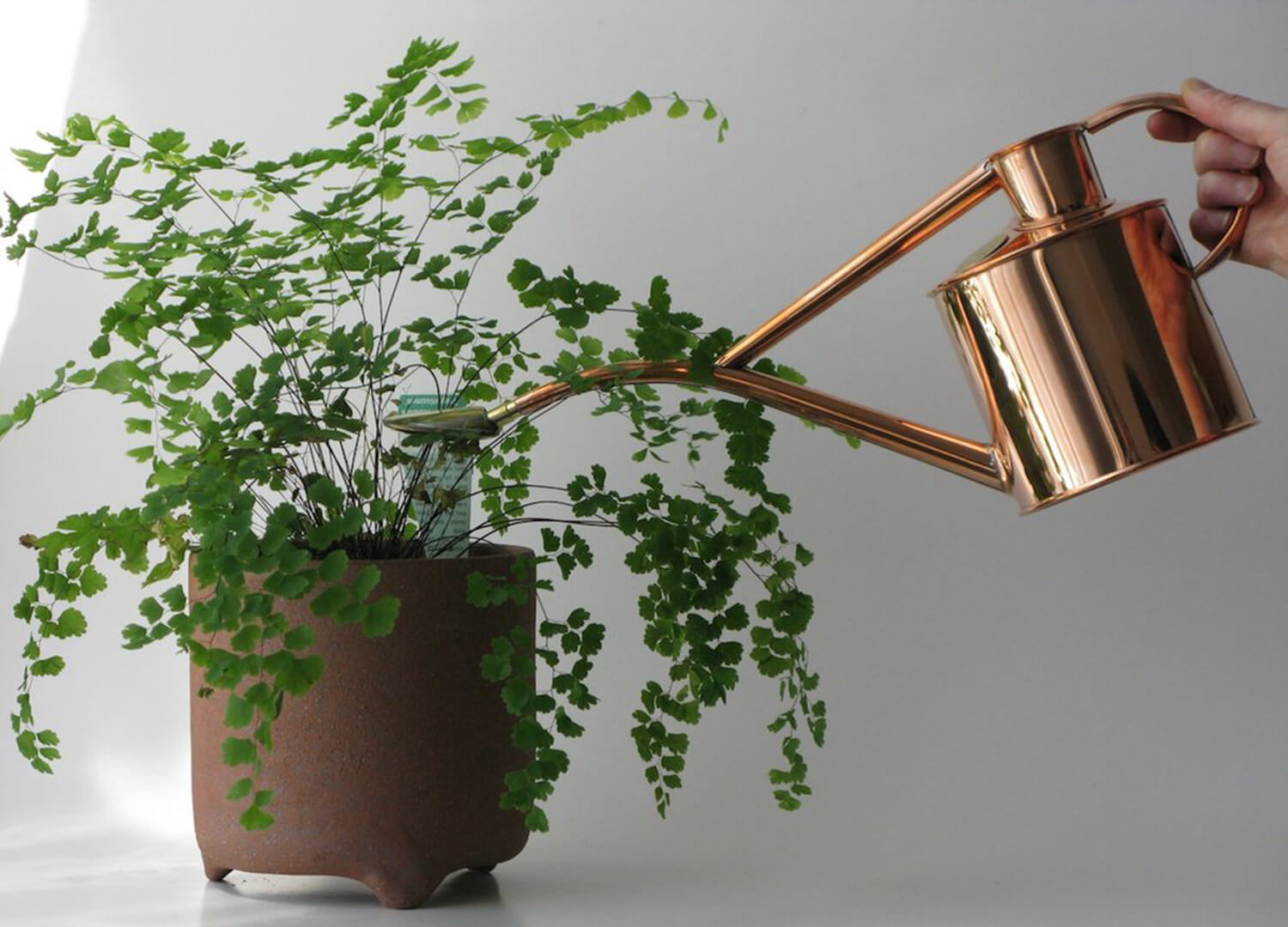 est living haws watering can copper 01