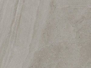 Signorino Limestone Oyster