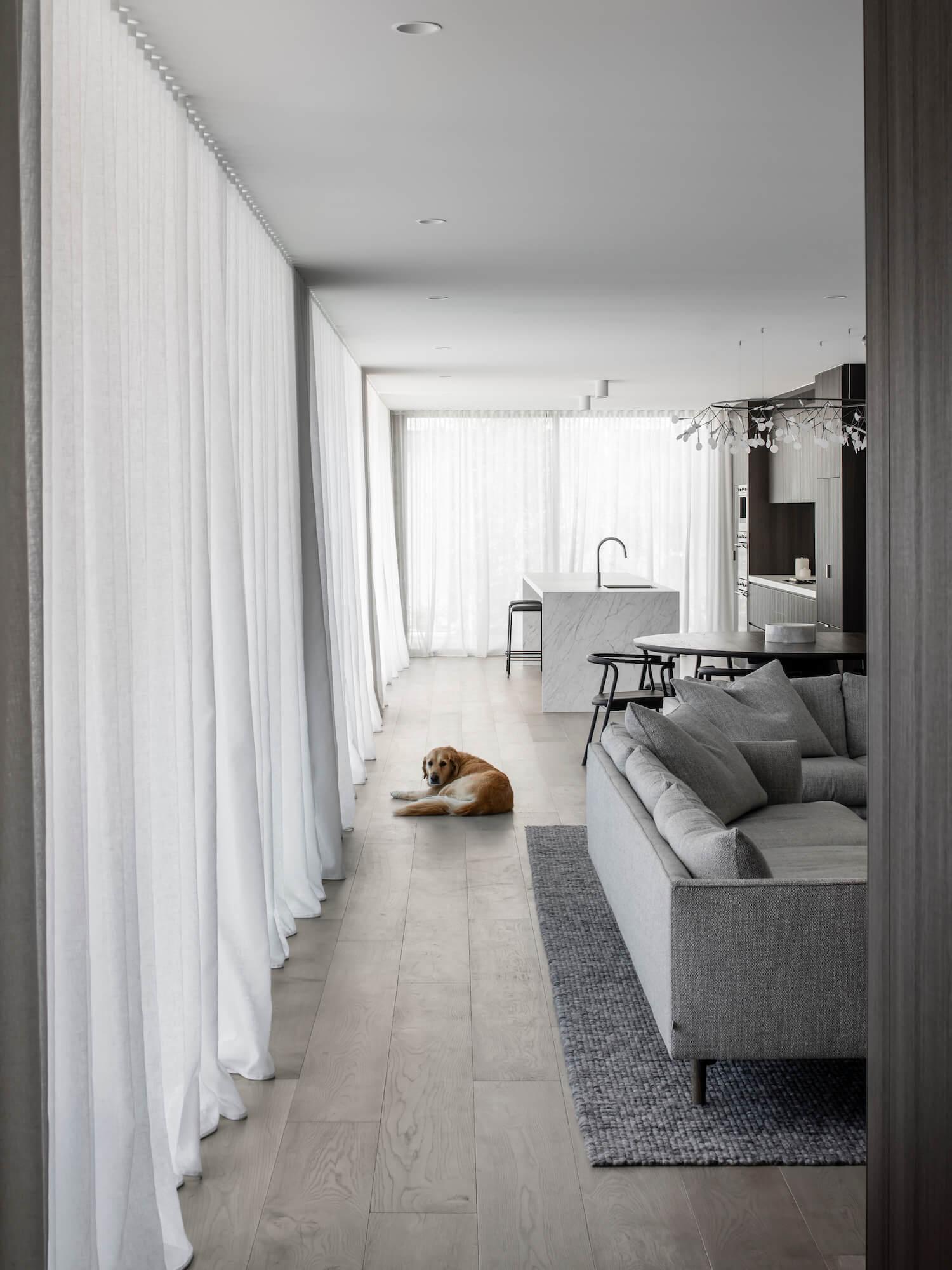 est living adam kane architects bayside home 9